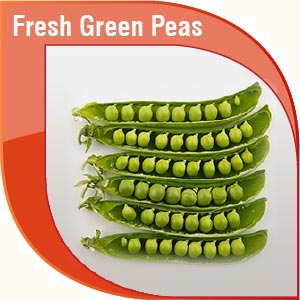 Pakistan Fresh Vegetables Exporters & Suppliers, Pakistan Garlic
